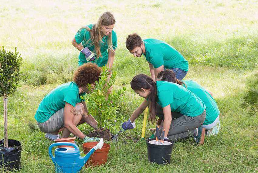 How and why do you practice environmental education?