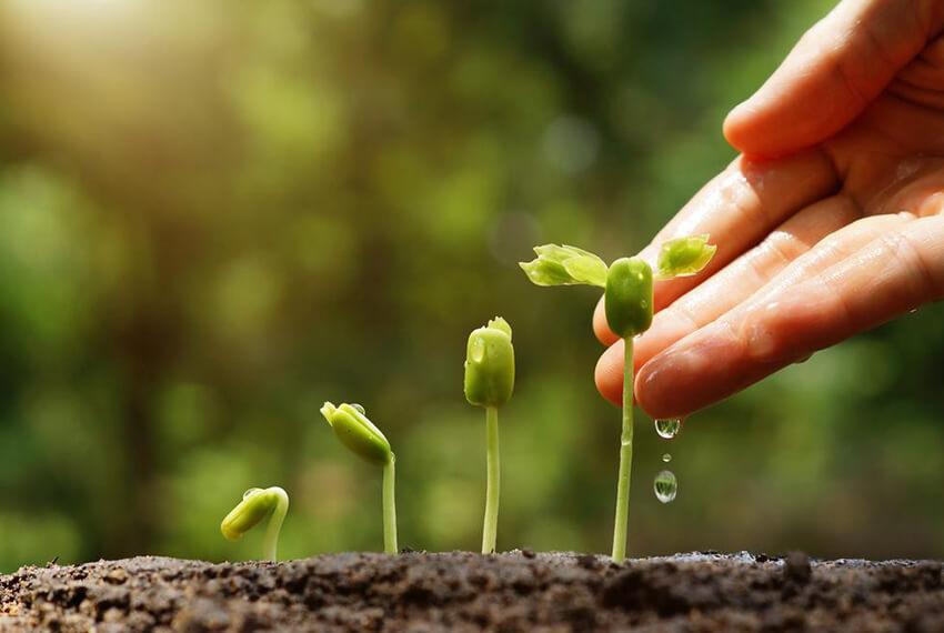 Environmental Education Position Paper – Survey