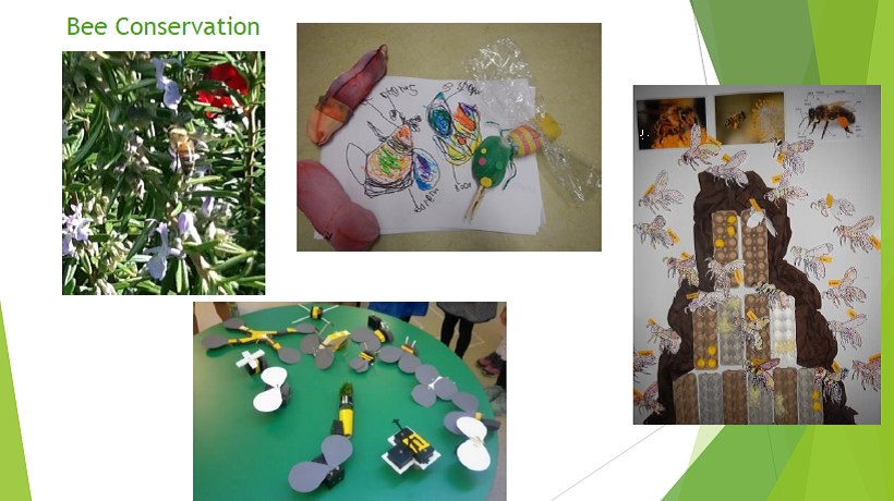 Learning Circle #13 Exploring the intersections of STEM and sustainability in the early years